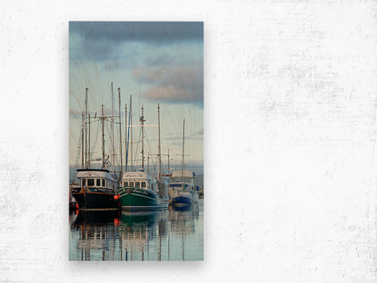 Fishers day off Wood print
