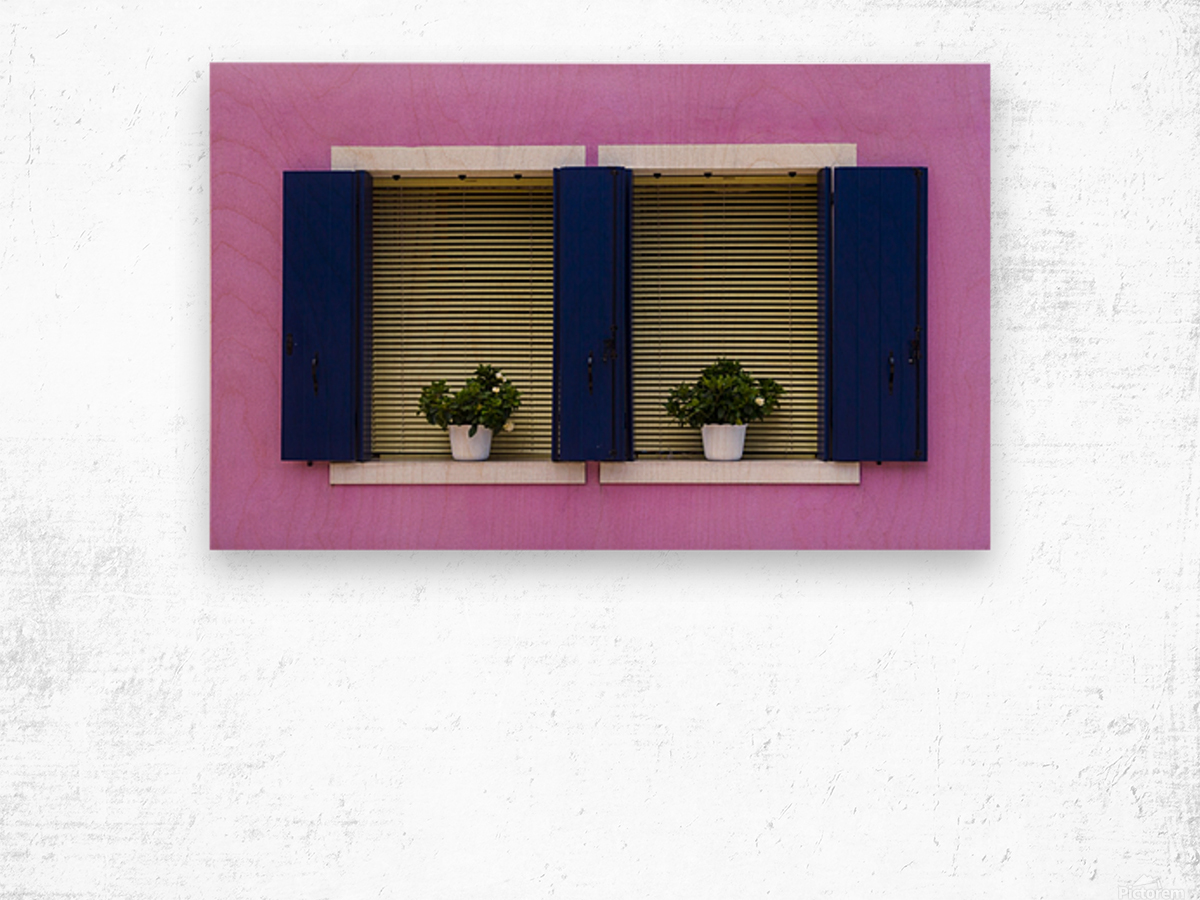 Windows in Burano Wood print