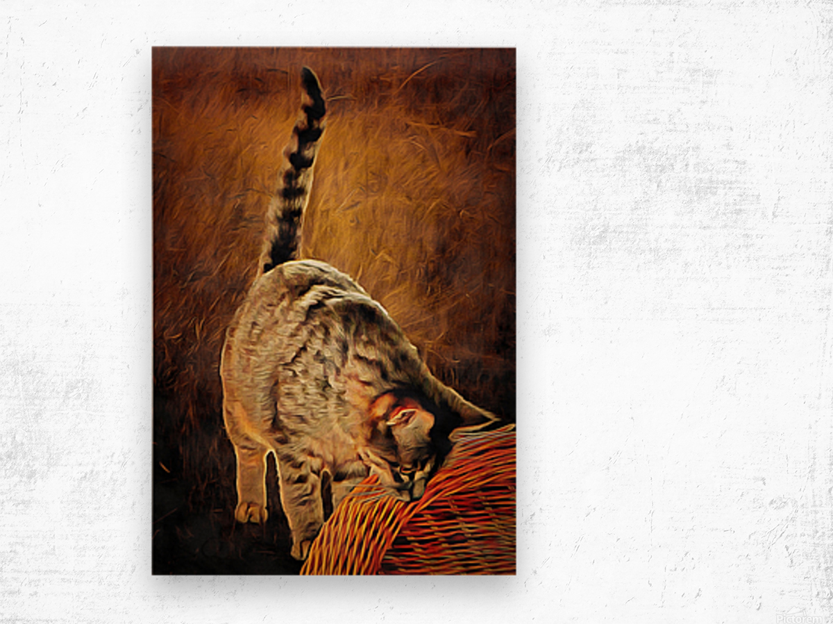 Curiosity And The Cat Wood print