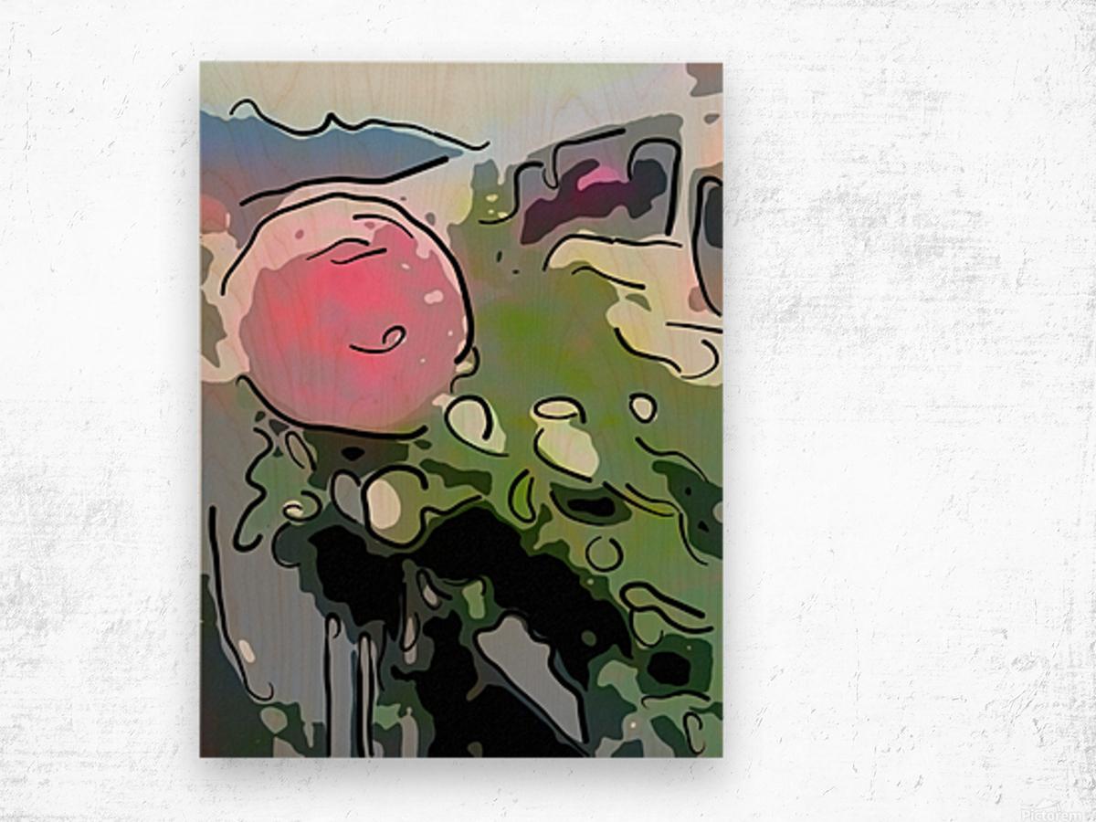 Pink Rose Garden on Braddock Drive Wood print