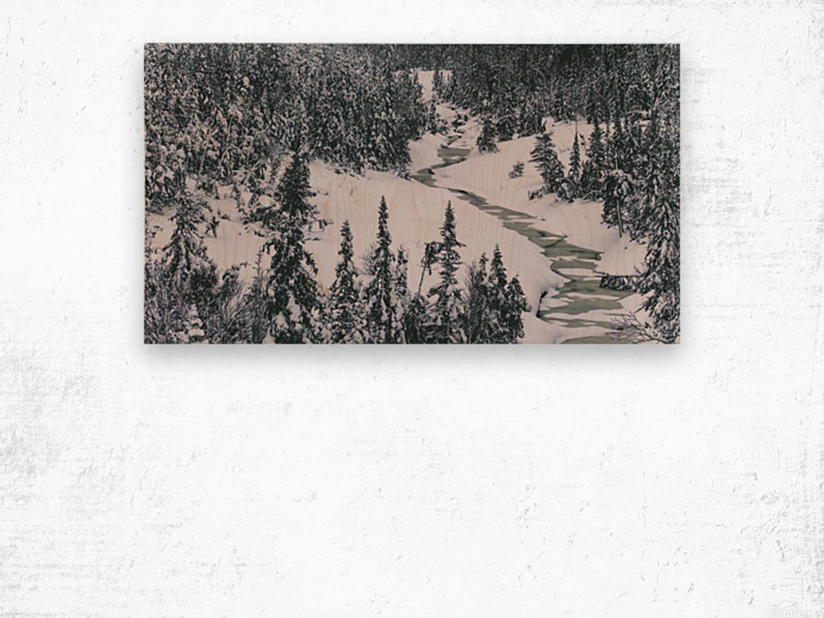 Frozen river. Wood print