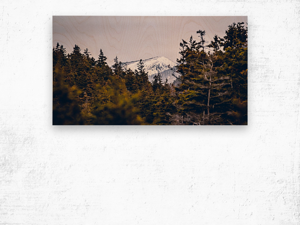 Cape Breton Highlands Wood print