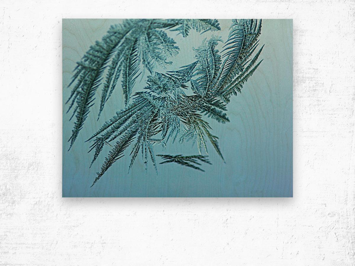 Frosty Blue Wood print