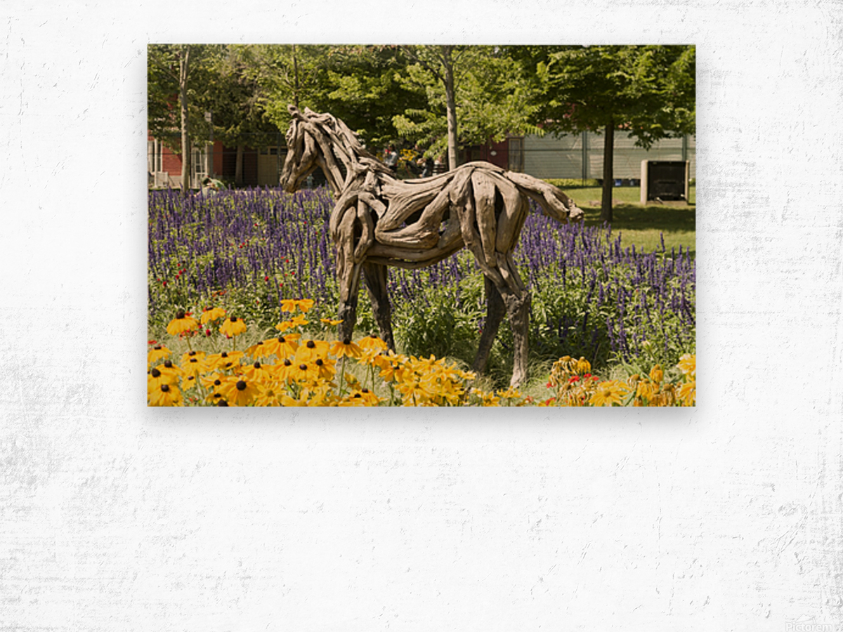 Odyssey the horse and Hope the Colt sculptures made of driftwood by Heather Jansch. 2 Wood print