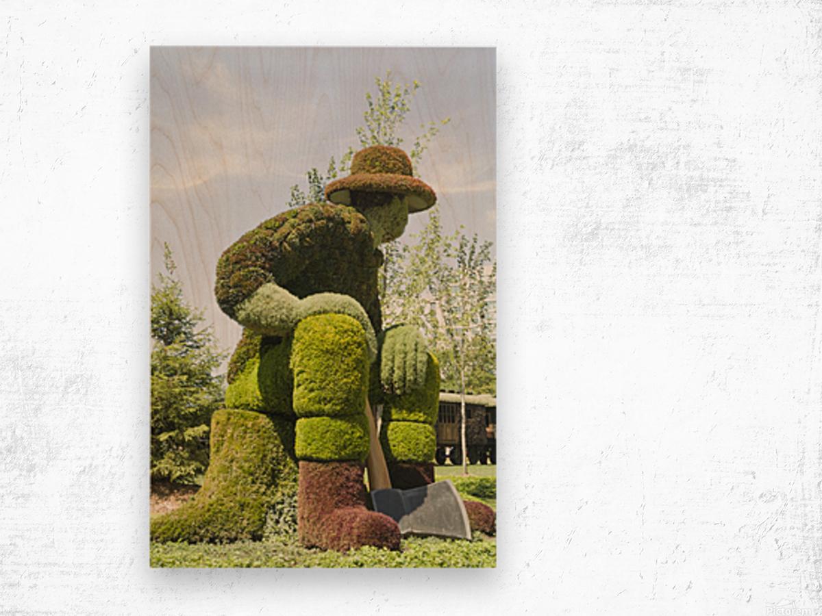 Big Joe Mufferaw 2 Wood print