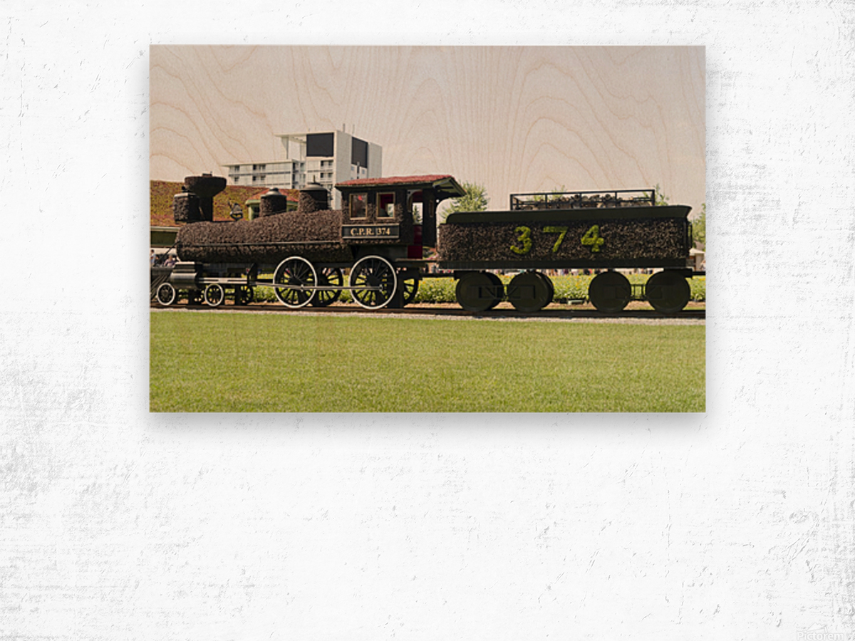 CPR train 374 Wood print