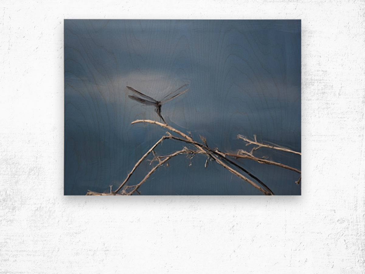 Dragonfly Digital Painting 52-70 200px Wood print
