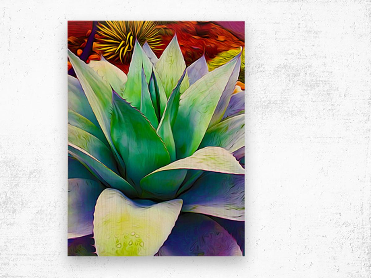 Succulent Dewdrop Wood print