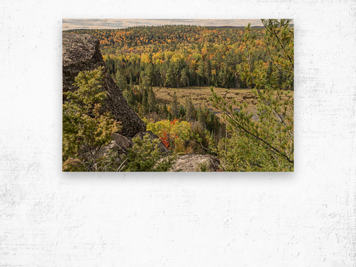 Eagles Nest Lookout 4 Wood print