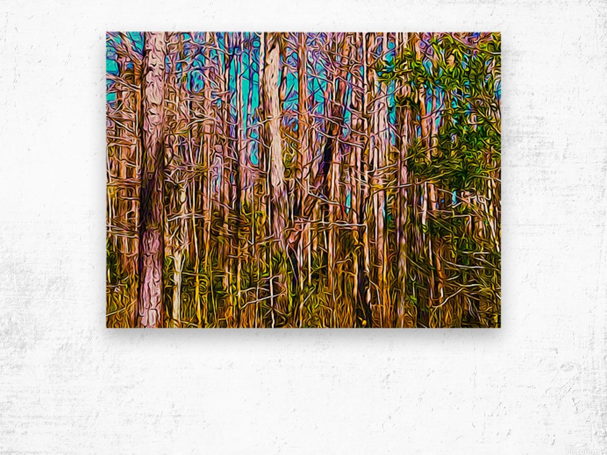 Florida Trees Wood print