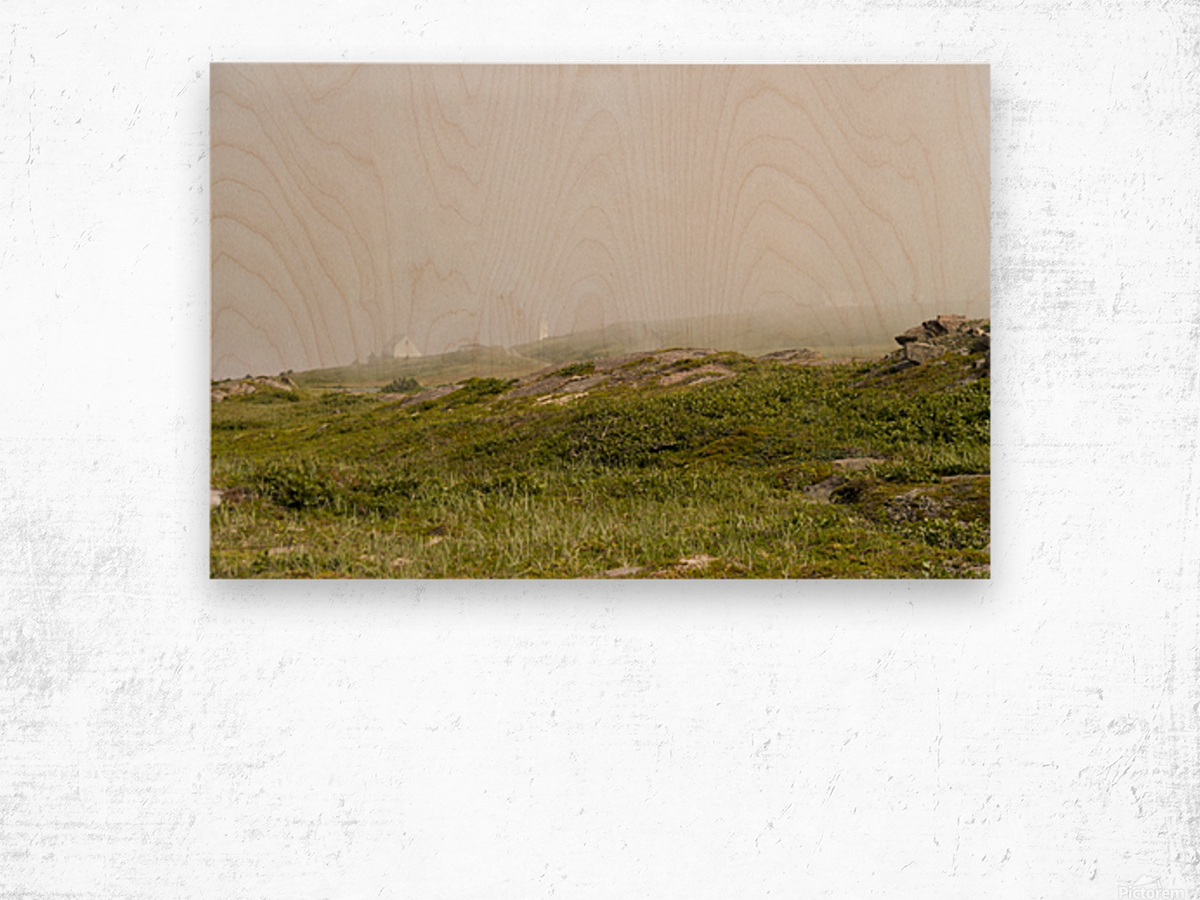 View from Cape Spear Walking trails Wood print