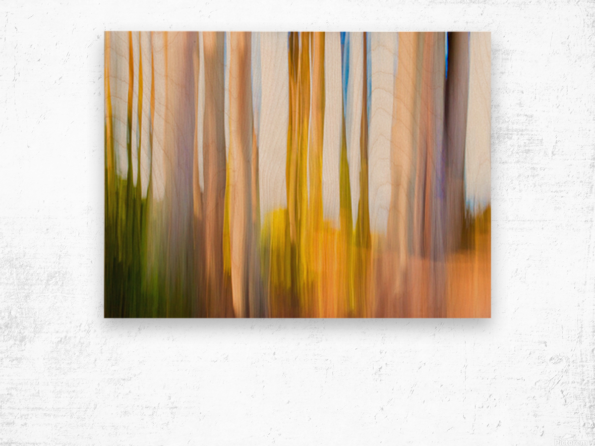 Moving Trees 25 Landcape 52 70 200px Wood print