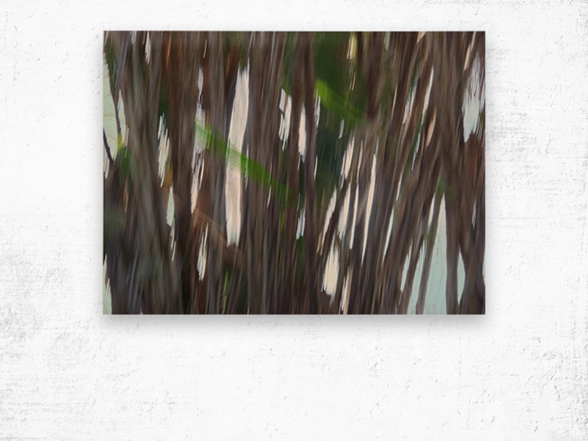 Moving Trees 26 Landcape 52 70 200px Wood print