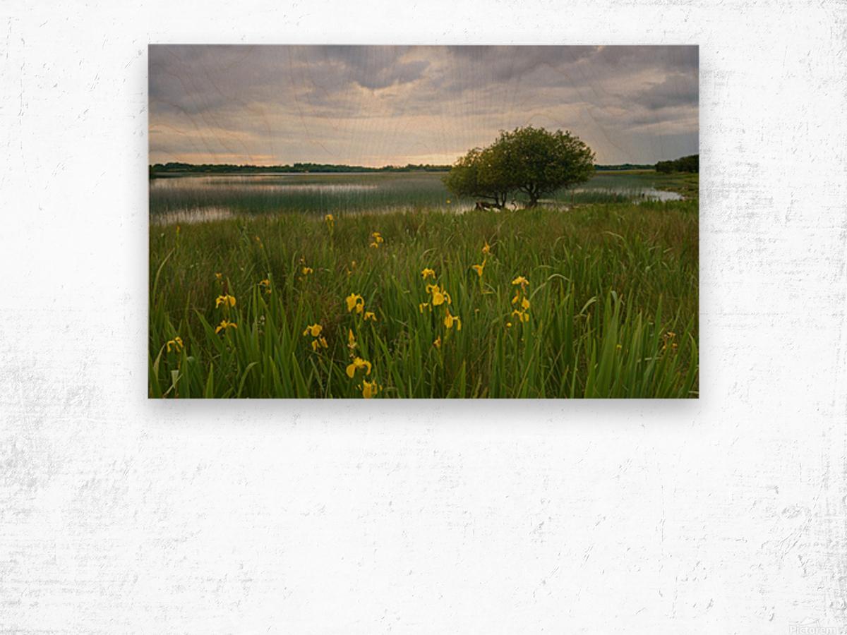 RN 036 Co.Roscommon Wood print