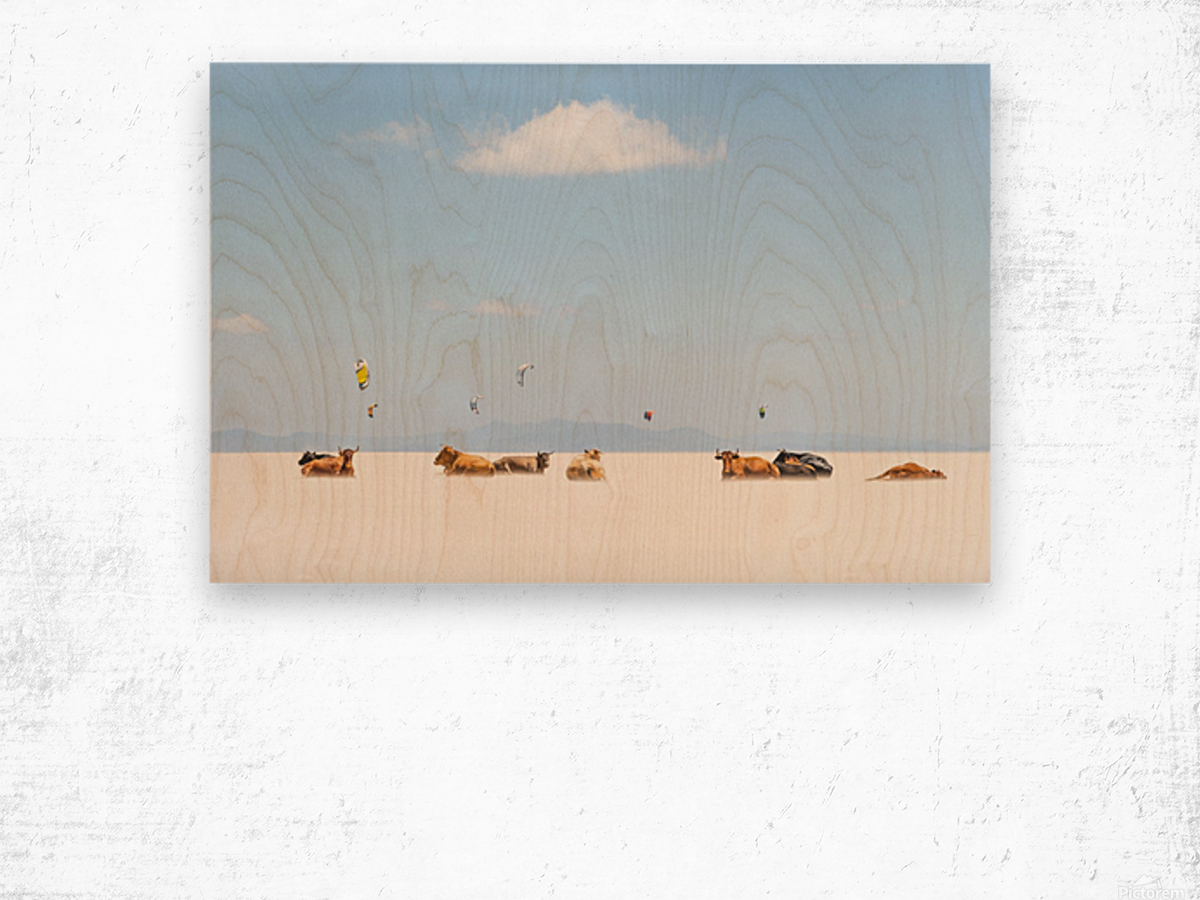 COWS AND KITES Wood print