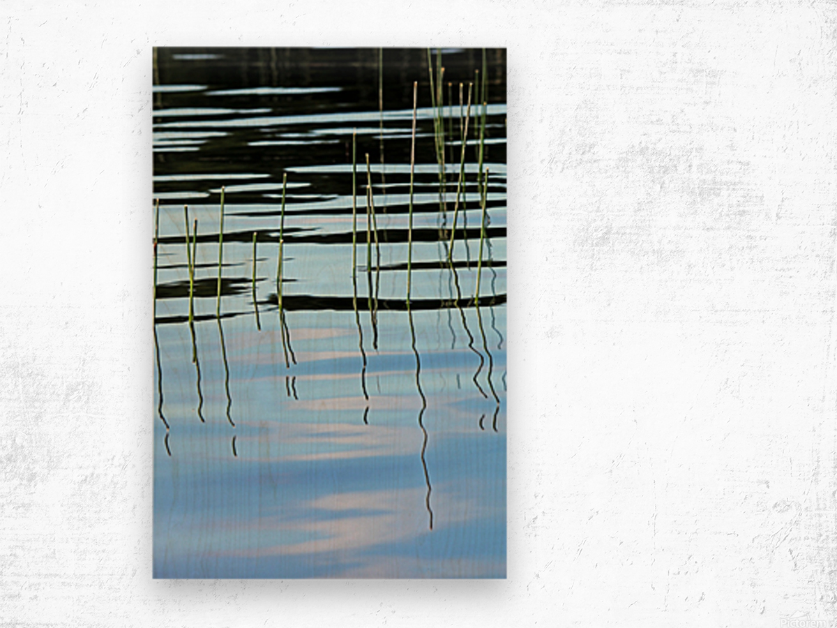 Reeds In The Shallows Abstract Wood print