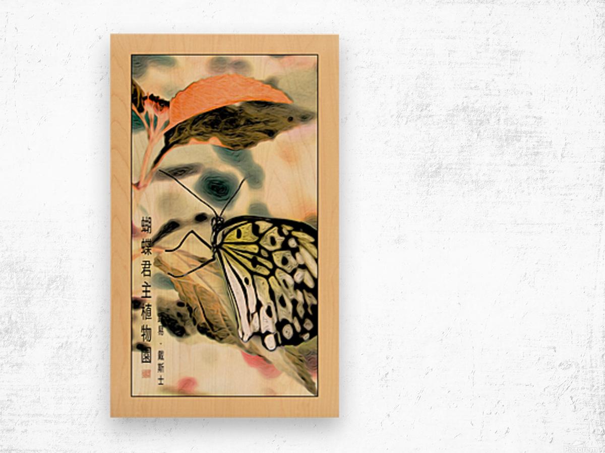 Papillon chinois  Wood print