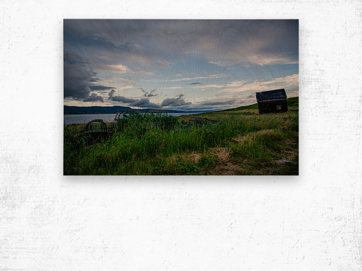 Island shack Wood print