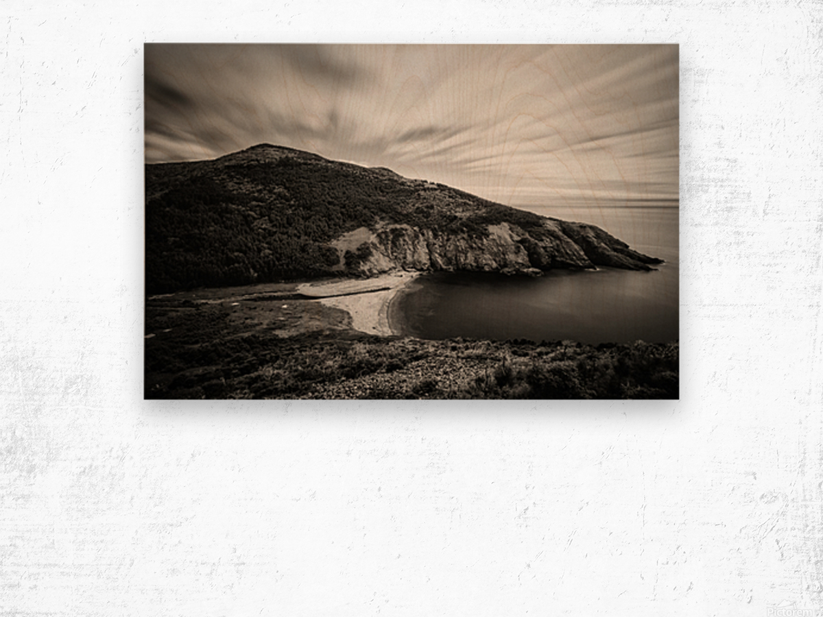 Fishing Cove Wood print