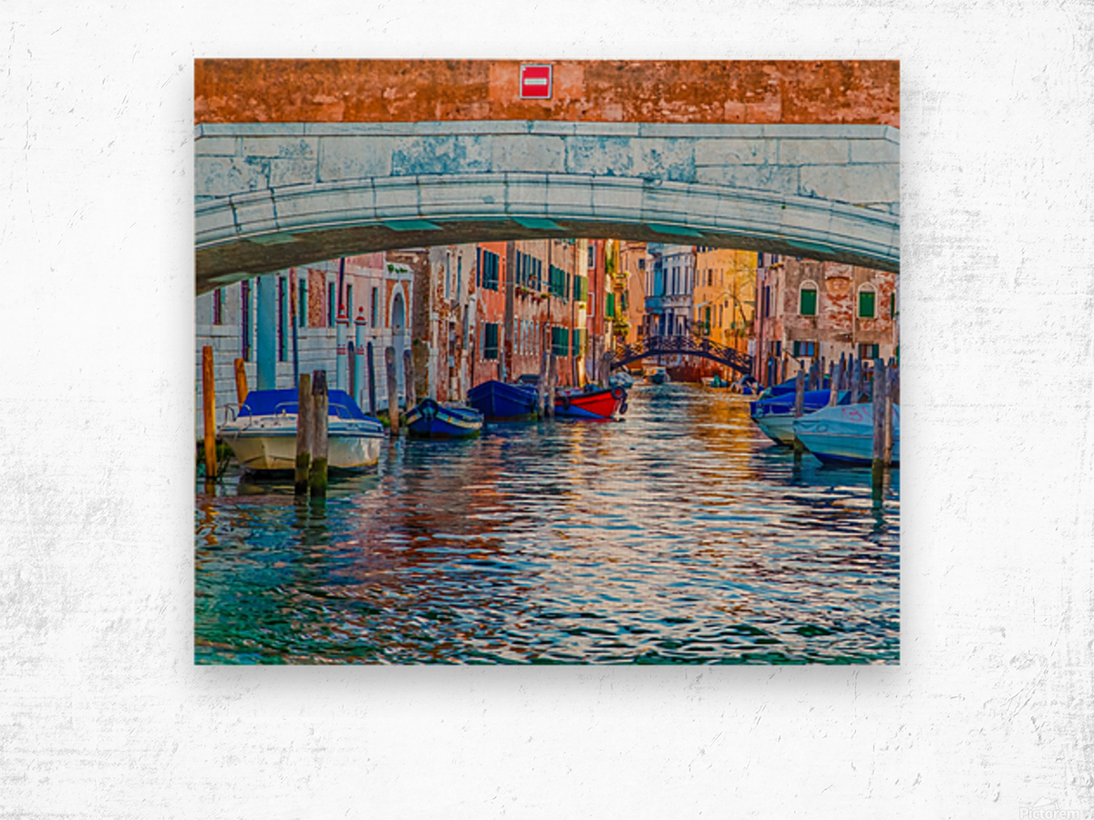 Afternoon Light in Venice Canal Wood print