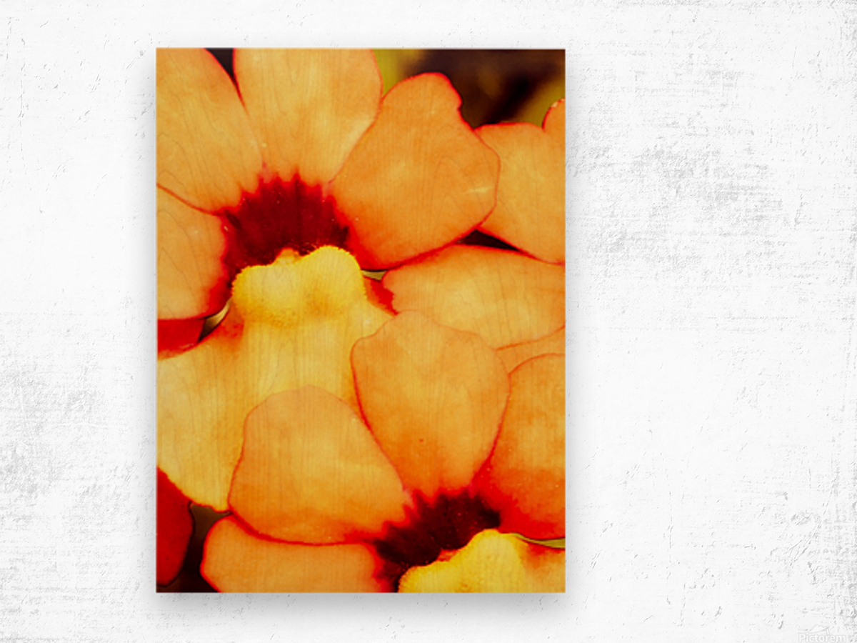 Yellow Mello Wood print