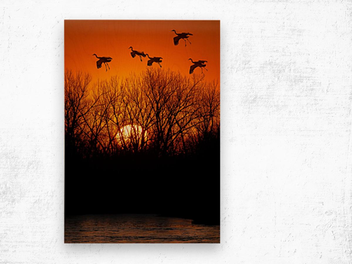 Dawn patrol over the Platte Wood print
