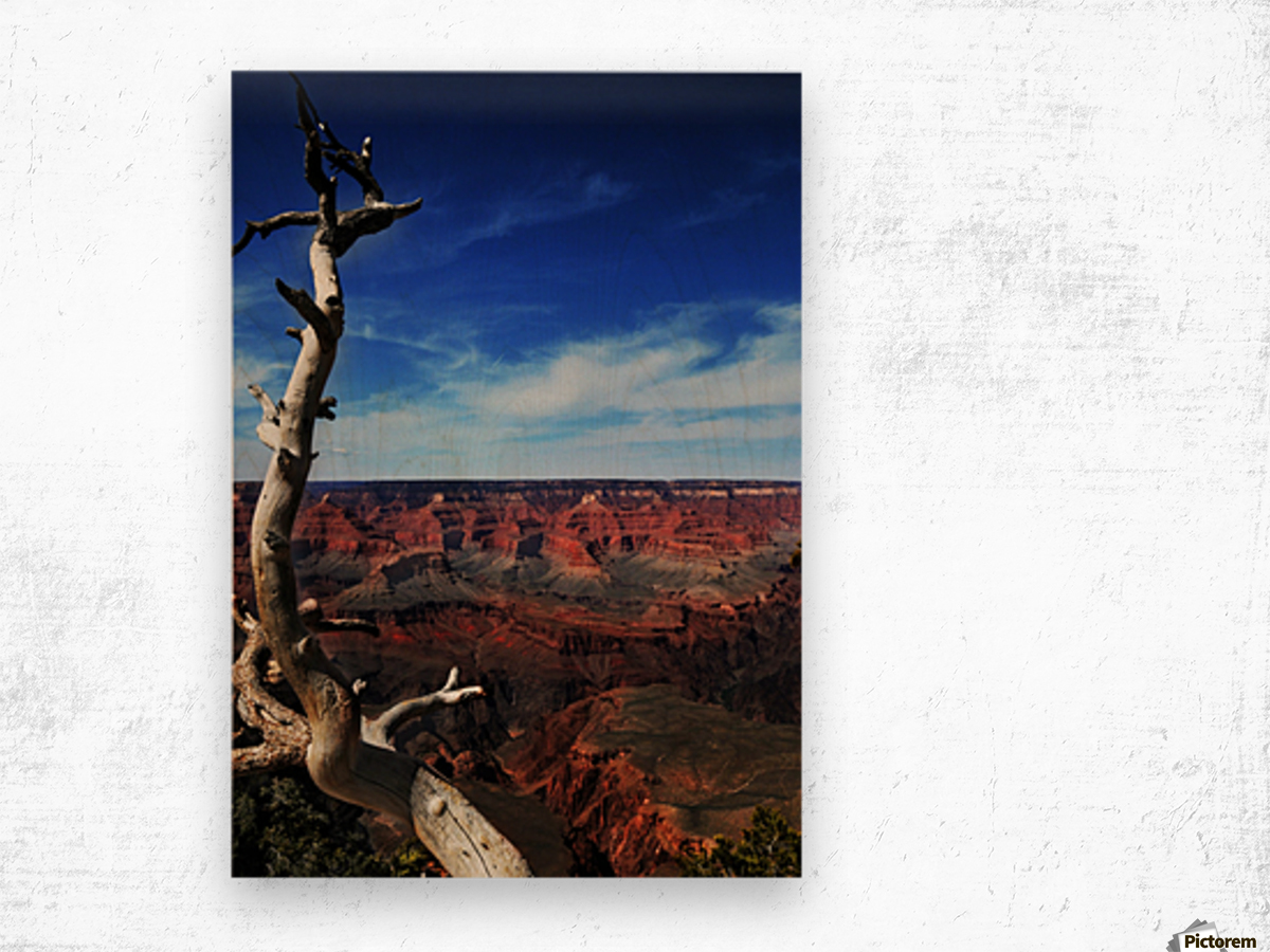 Grand Canyon framed by tree Wood print