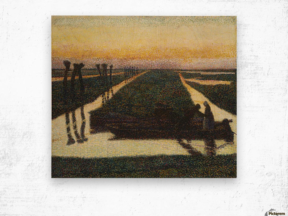 Toorop-broek Wood print