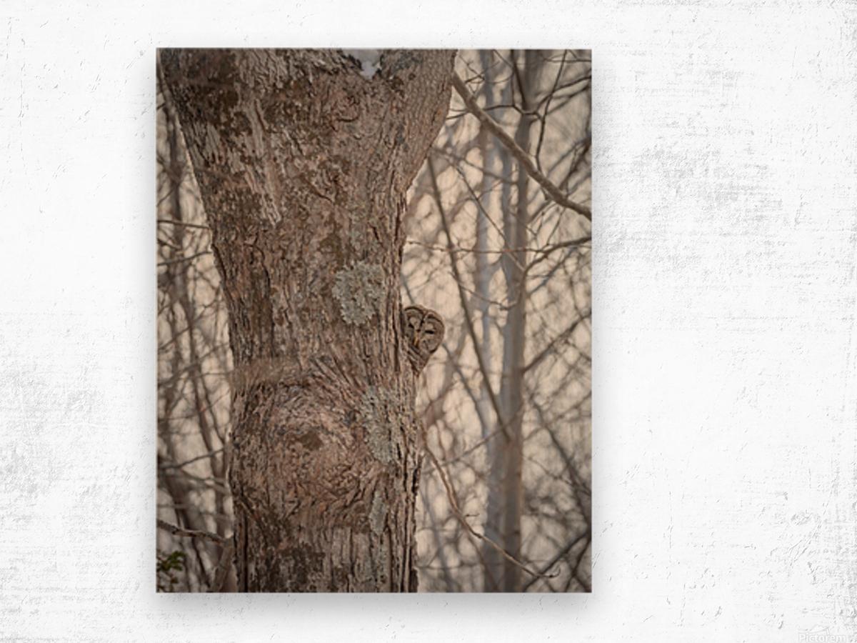 Whos looking at who Wood print