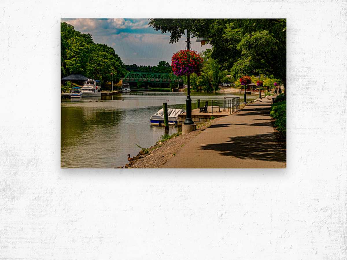 Erie Canal Vacation Wood print