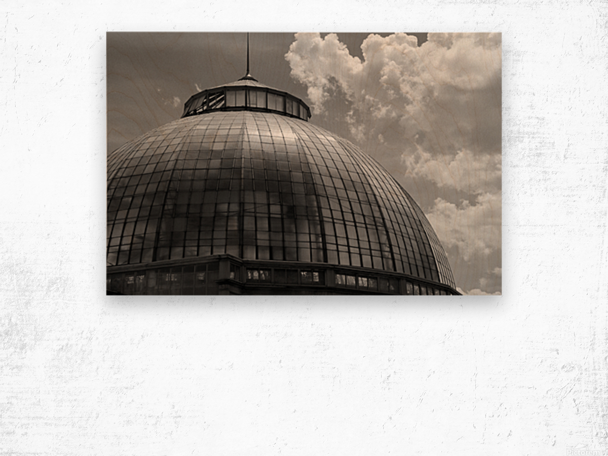 Belle Isle Conservatory Dome BW Wood print