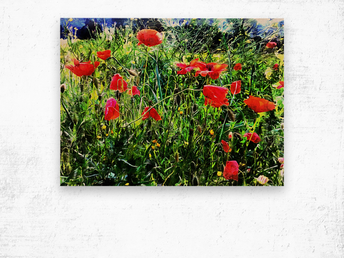 Green Pasture With Red Poppies Wood print