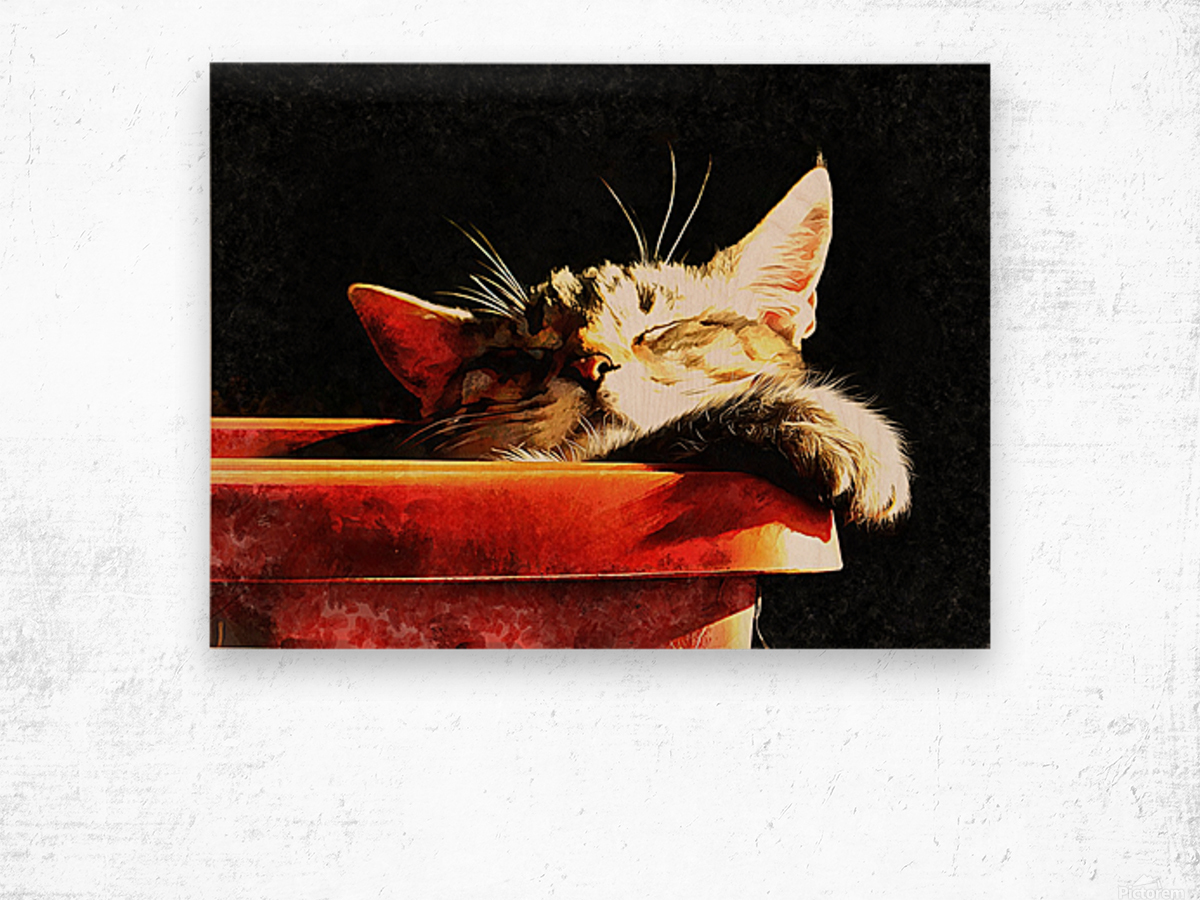 Wake Me When It Is Dinner Time Wood print