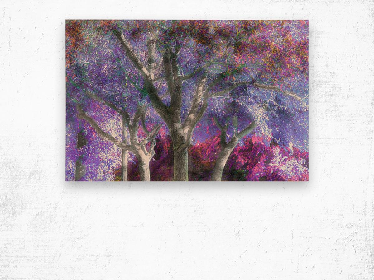 Muted Treetops Wood print