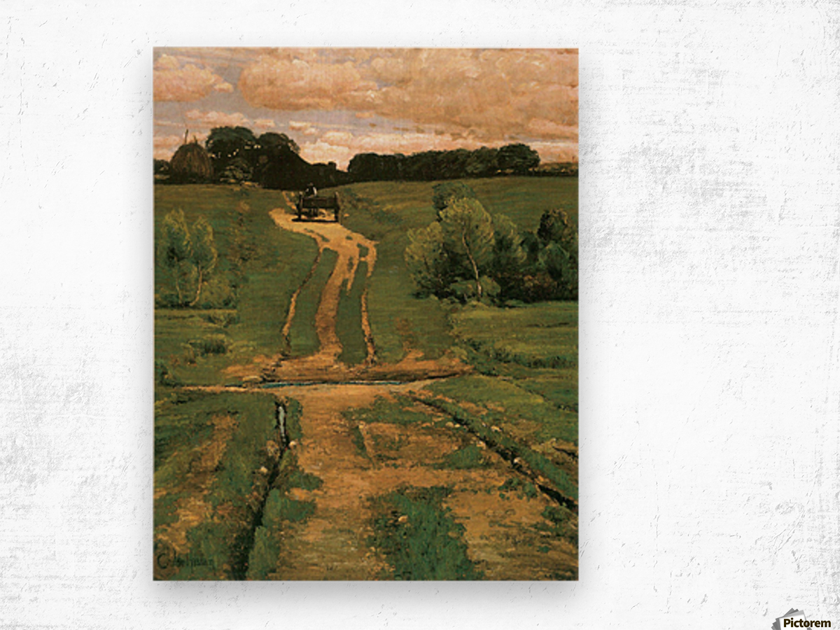 Open land by Hassam Wood print