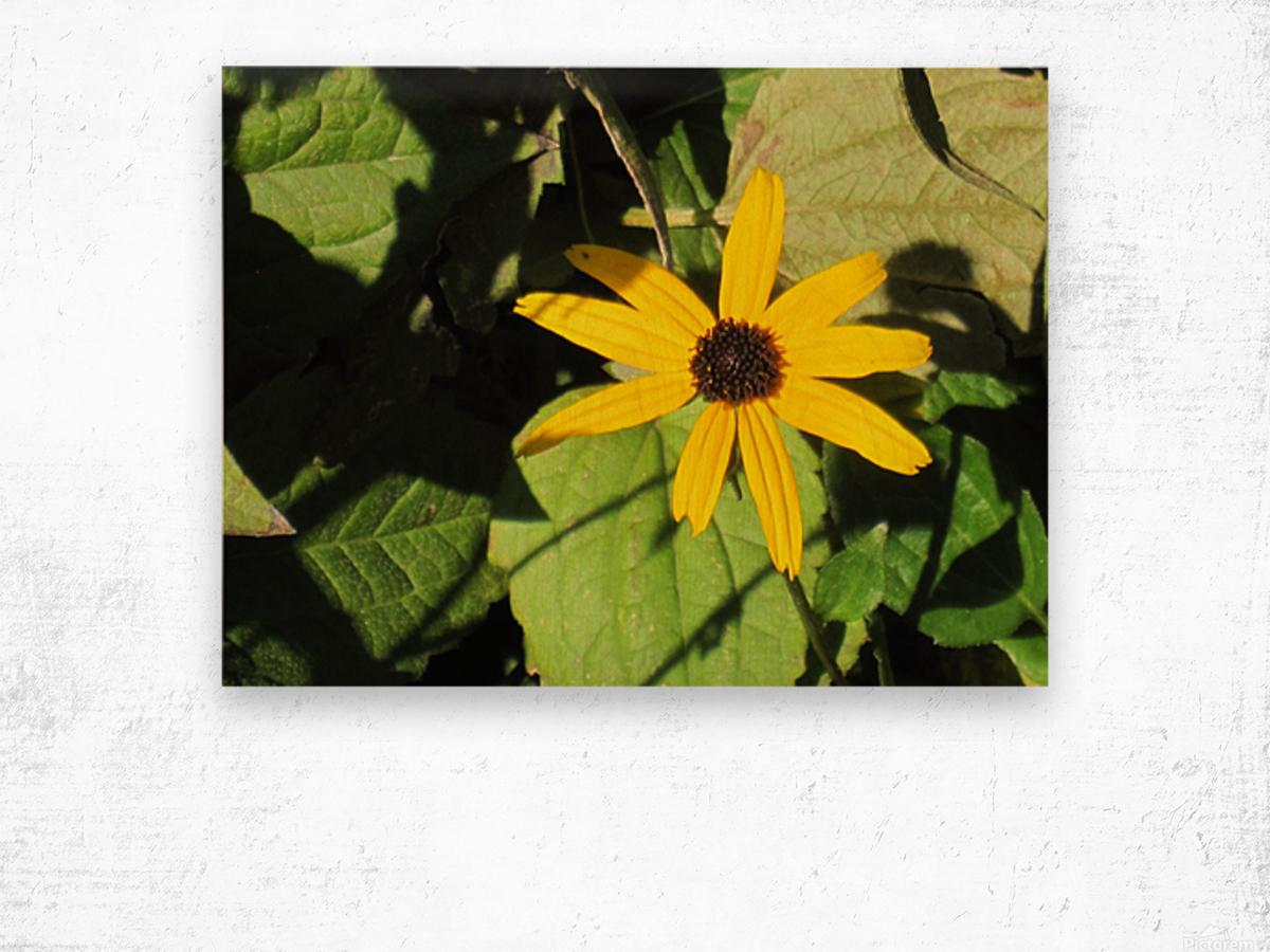 Flowers (62) Wood print