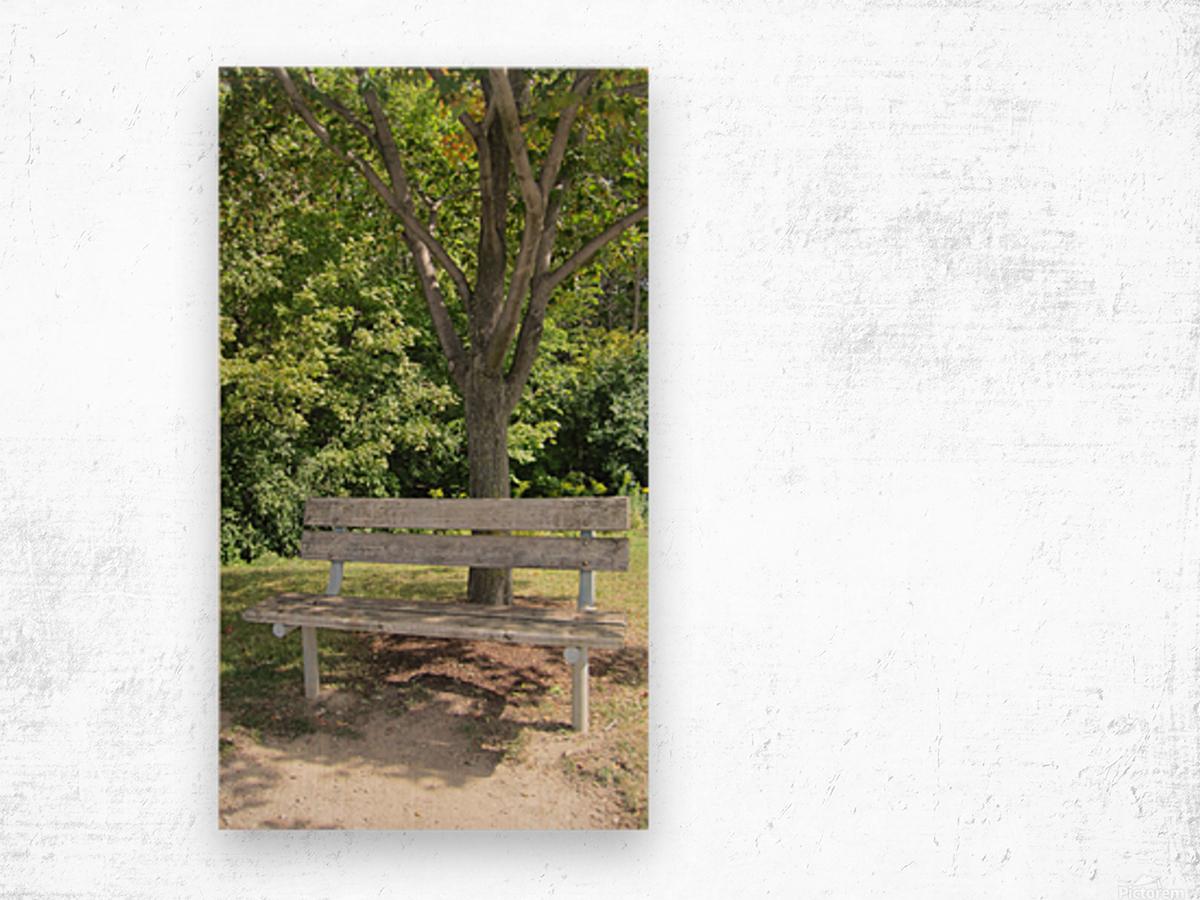 Bench (24) Wood print