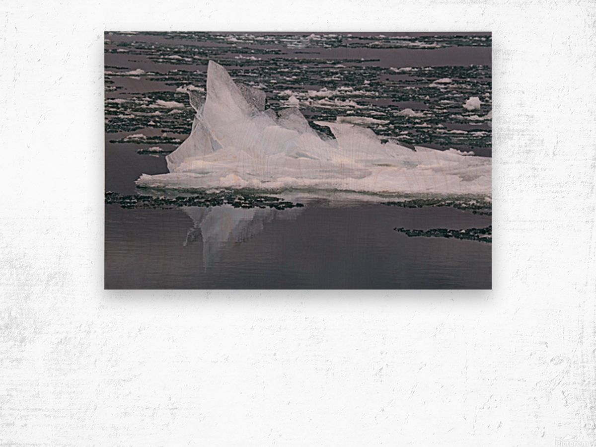 Jagged Ice on the River 2 021619 Wood print