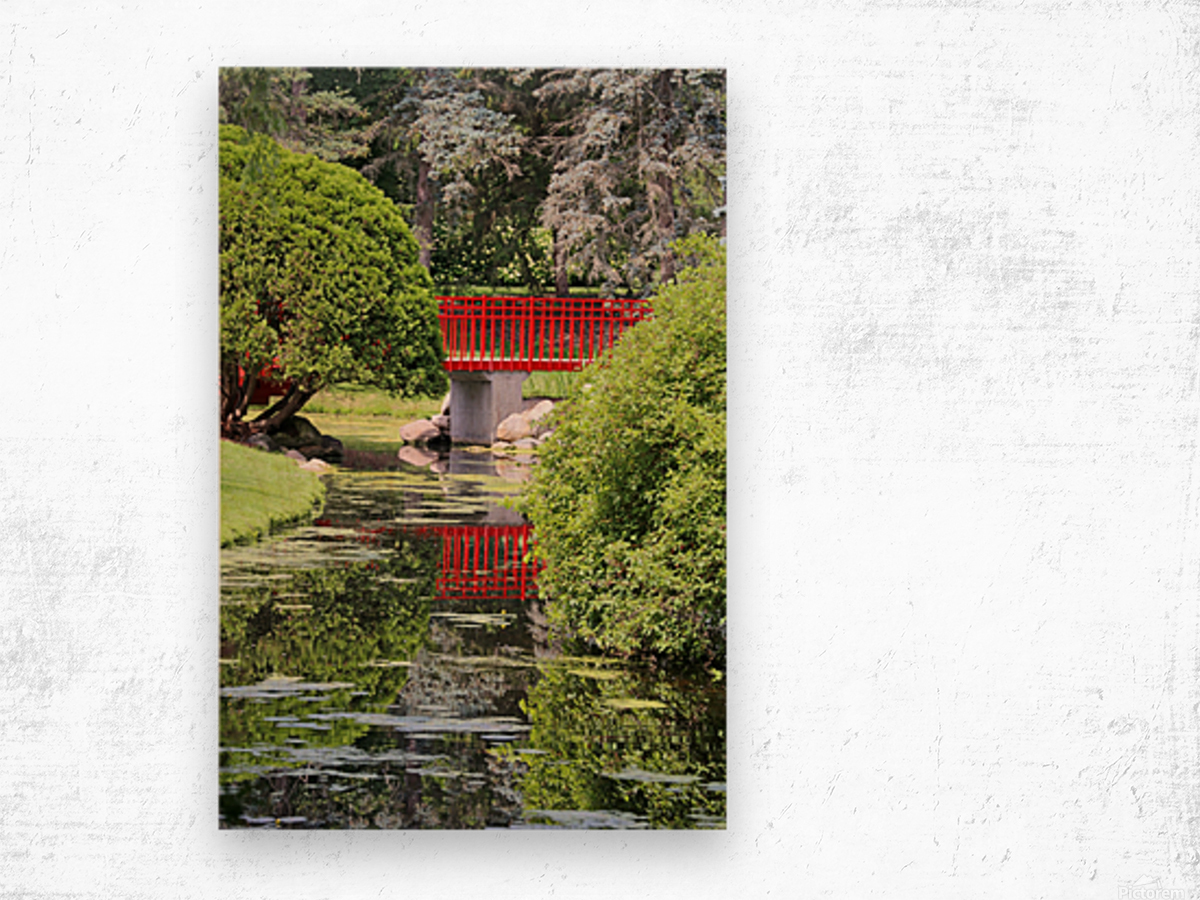 Red Bridge and Reflection 2 Dow Gardens 062618 Wood print