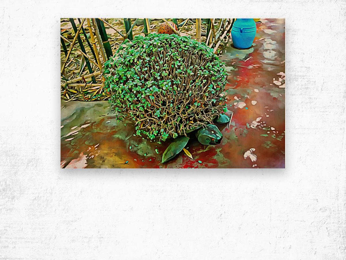 Turtle Pot At Majorelle Gardens Wood print