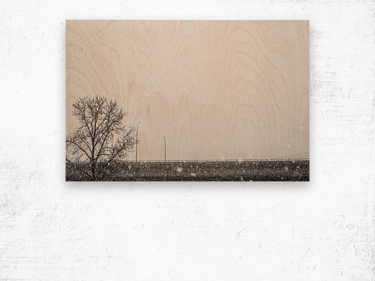 Freeway Snow... Wood print