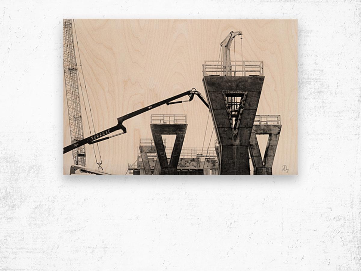 Magpie Heavy... Wood print