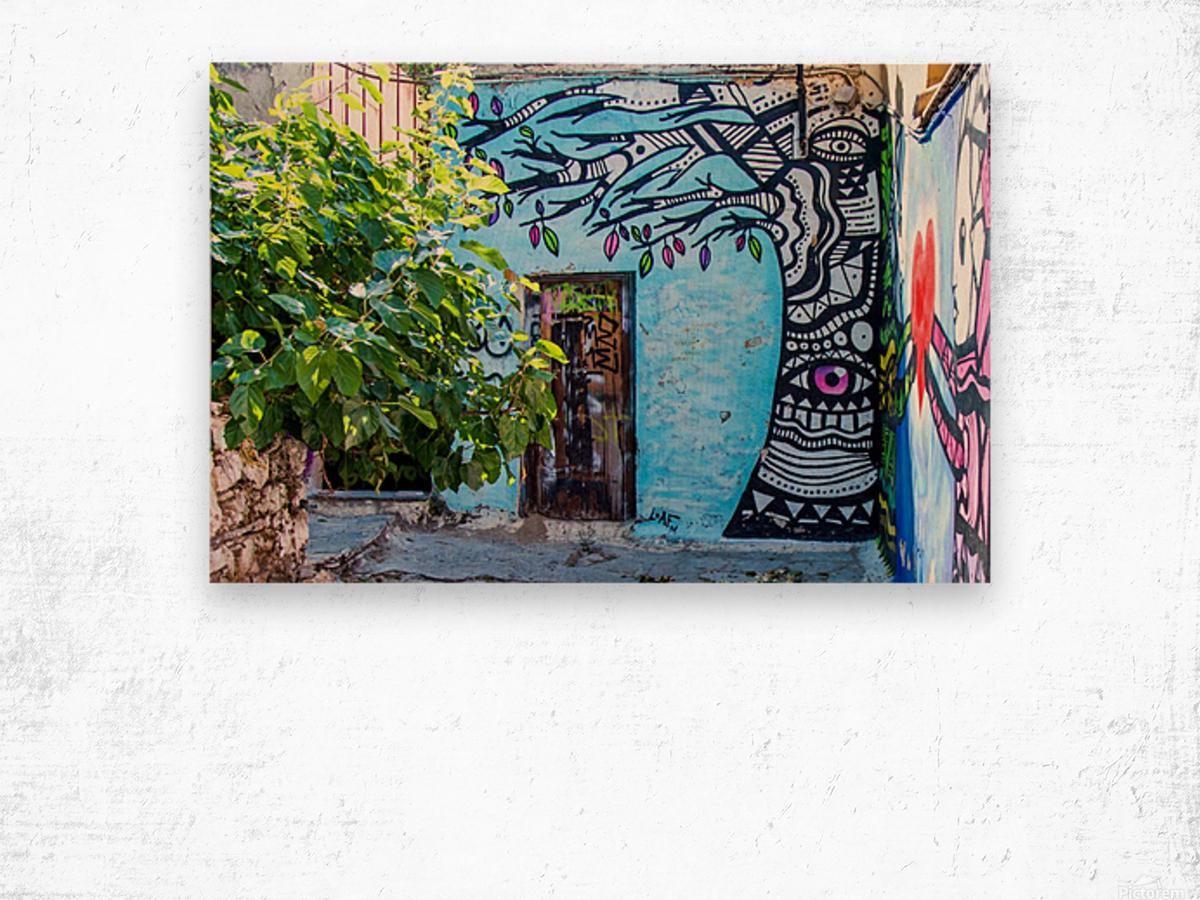 Doors & Windows 4 Wood print