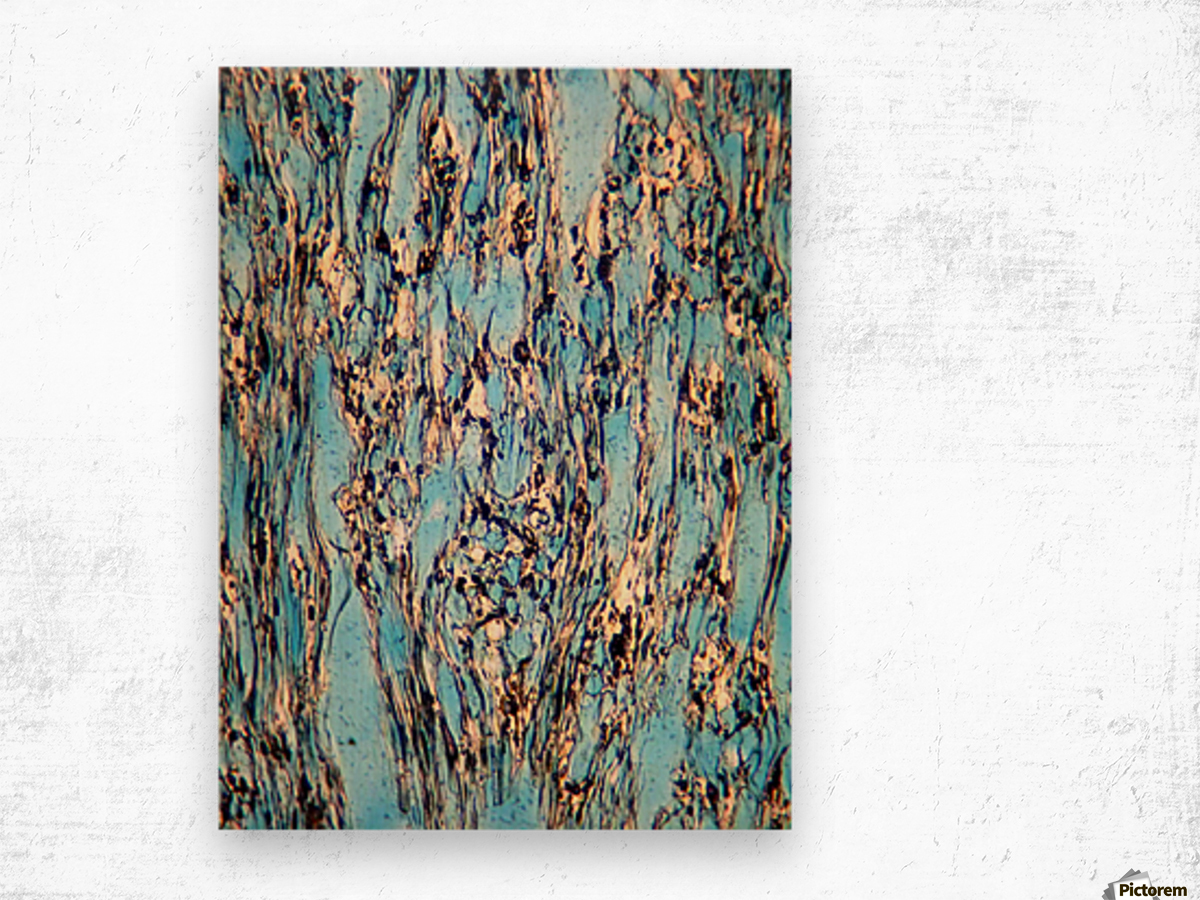 Waterways Wood print