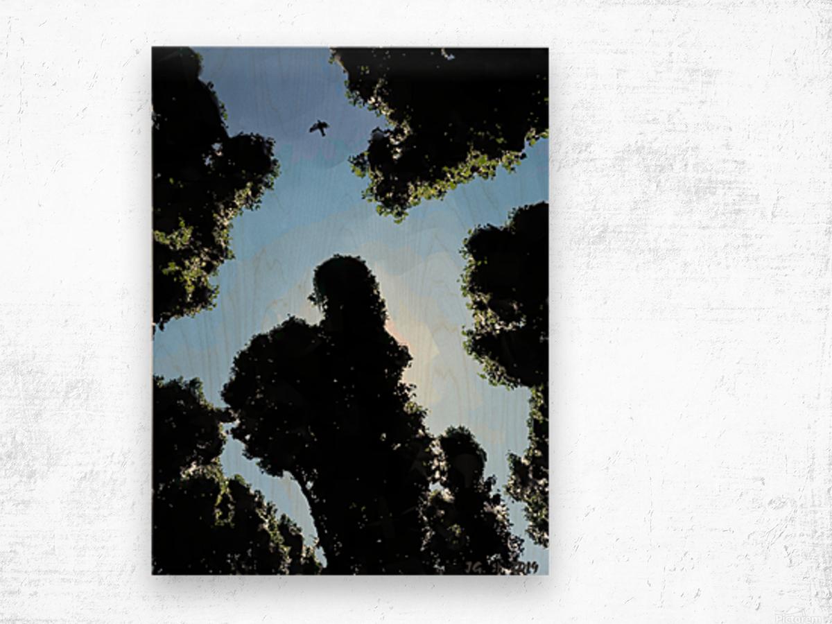 BERLIN_View  095a Wood print