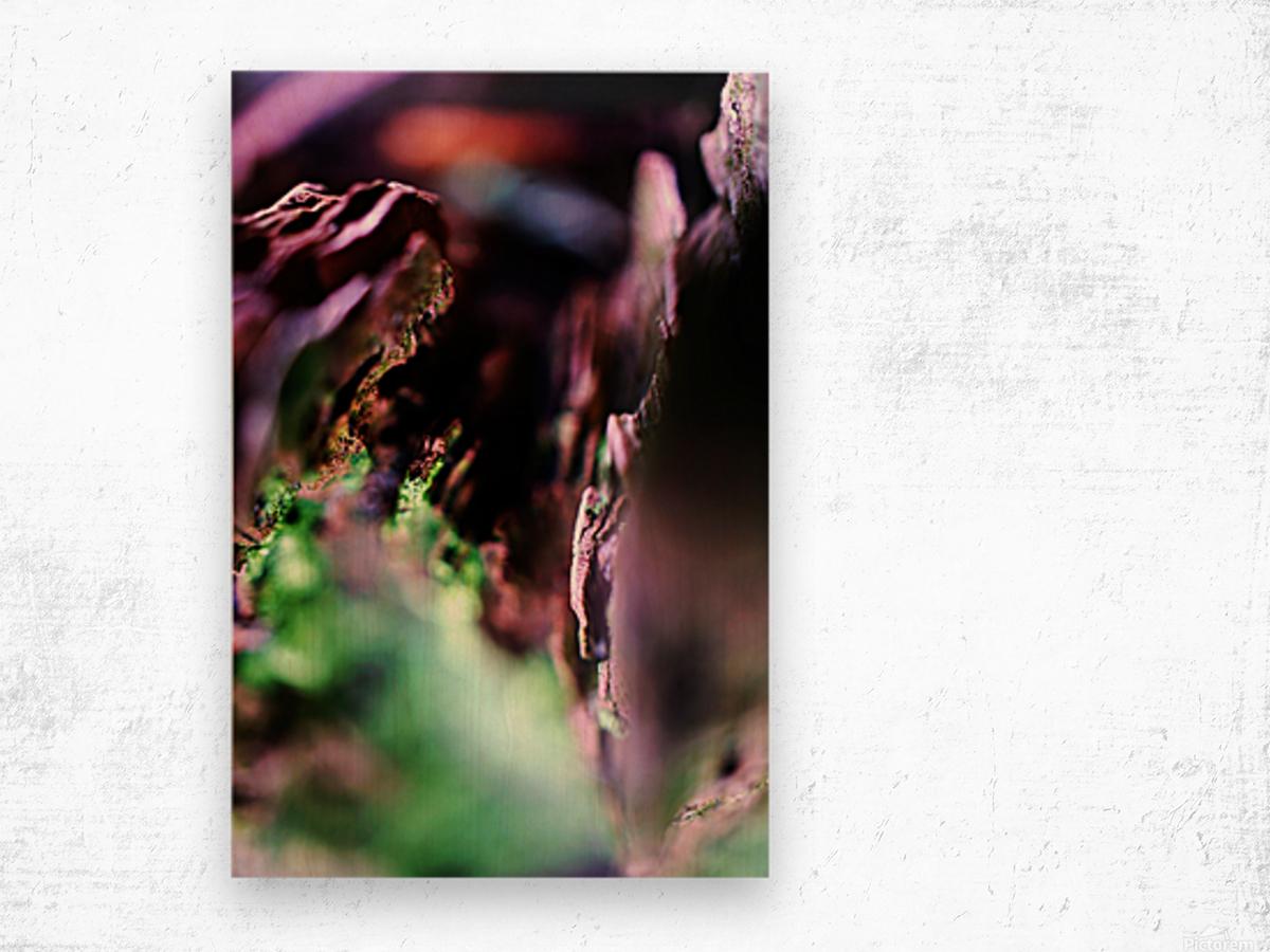 DSC03143 Wood print