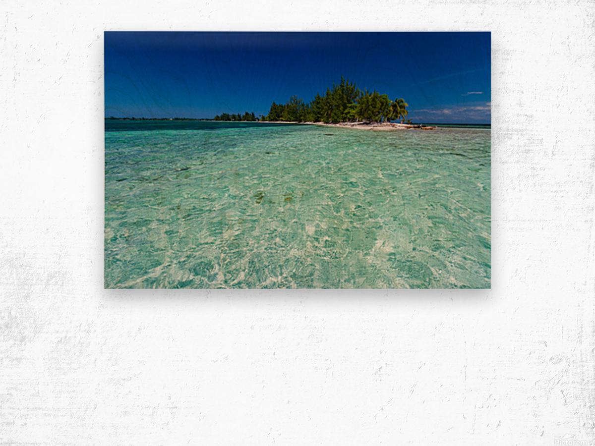Tropical Cay Wood print