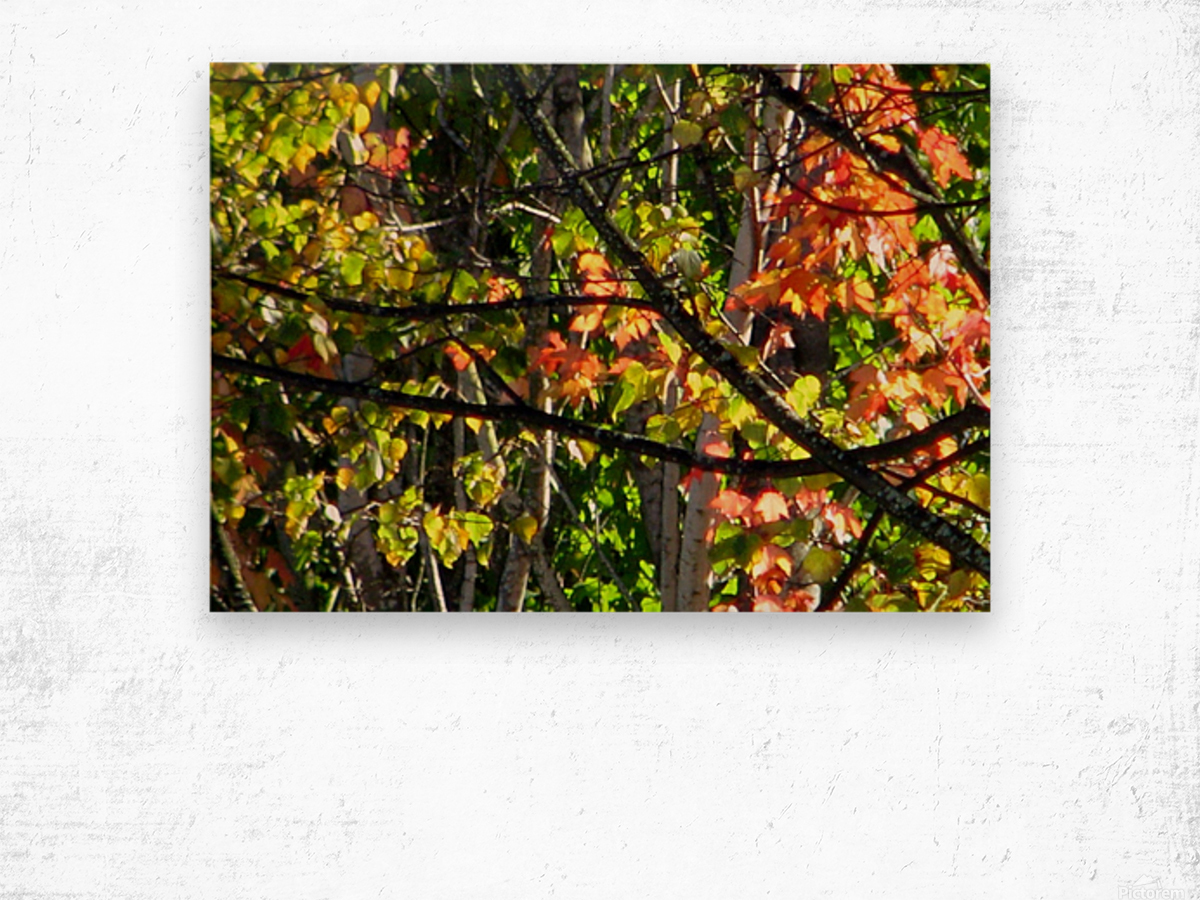Stained  Glass Autumn Wood print
