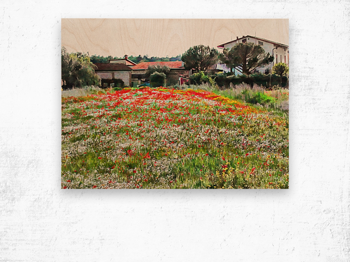 Old Farm House With Poppies Wood print