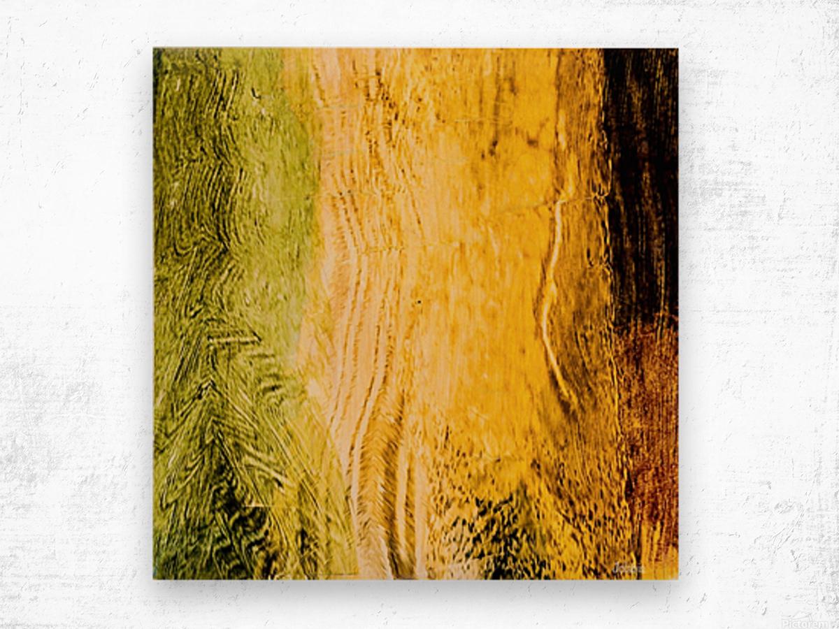 27AA08EC E0FC 4836 B76F 3325790738B2 Wood print